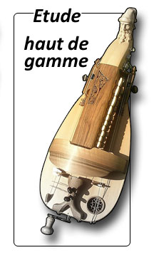 Vielle à roue modèle étude haut de gamme